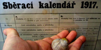 http://galerie-kulisek.euweb.cz/albums/userpics/10001/akad.jpg