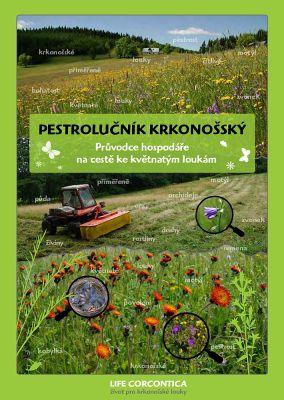 http://galerie-kulisek.euweb.cz/albums/userpics/10001/normal_pestrolucnik_krkonossky.jpg